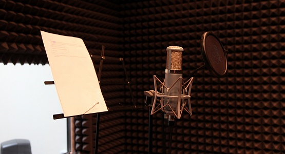 Equipment of audio recording studio and video studio. Temocenter